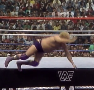 This isn't a move; just Harley Race randomly falling out of the ring