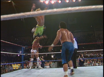 """I don't remember ordering a flying Shawn Michaels"" - Haku, seconds before the pin"